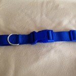 adjustable collar in webbing