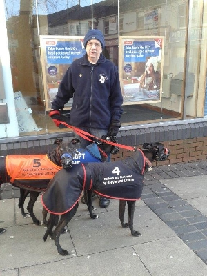 Misty with her foster family, promoting greyhounds as pets in Aldershot.
